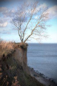 Steilküste an der Ostsee (Hermannshöhe)